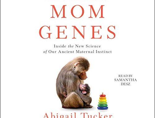 The scientific odyssey  of motherhood